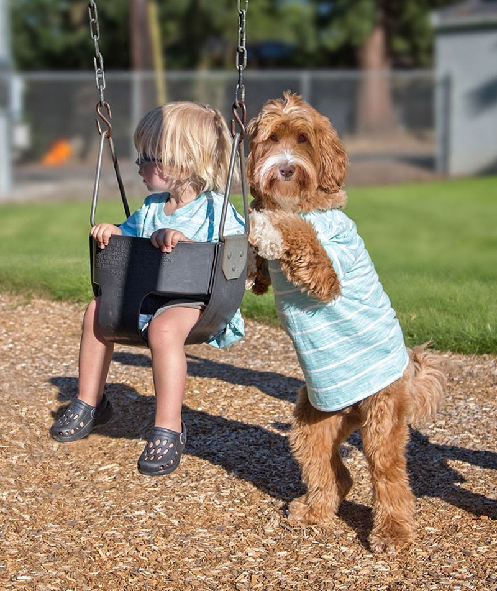 Tan chảy với cặp đôi bé-cún cực đáng yêu - ảnh 3