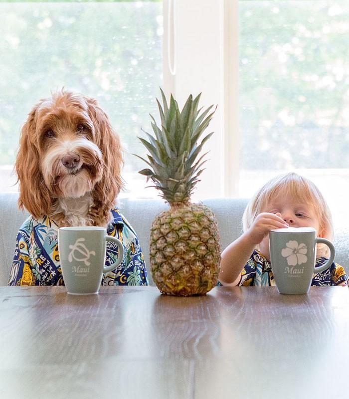 Tan chảy với cặp đôi bé-cún cực đáng yêu - ảnh 4