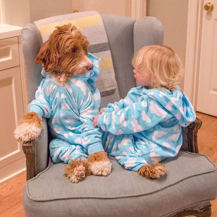 Tan chảy với cặp đôi bé-cún cực đáng yêu - ảnh 7