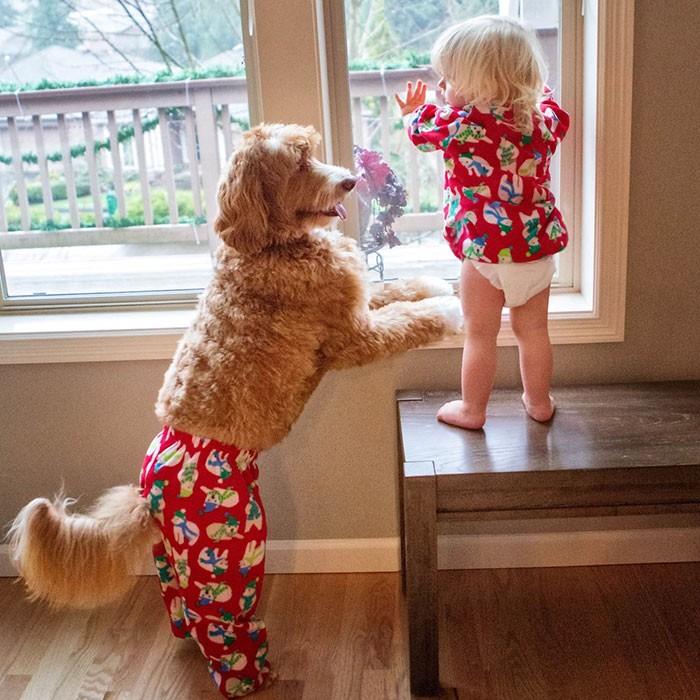 Tan chảy với cặp đôi bé-cún cực đáng yêu - ảnh 9