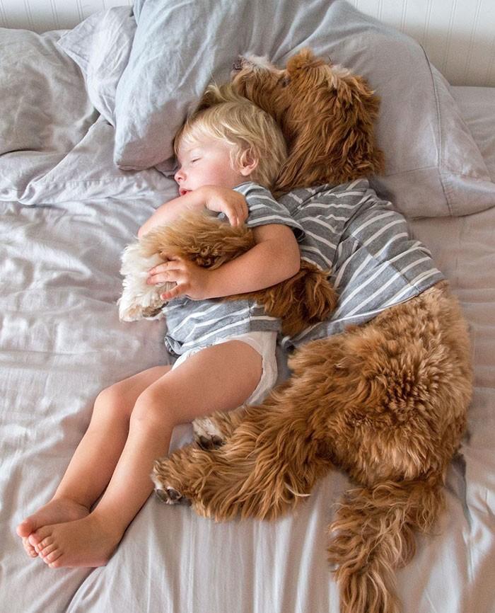 Tan chảy với cặp đôi bé-cún cực đáng yêu - ảnh 12
