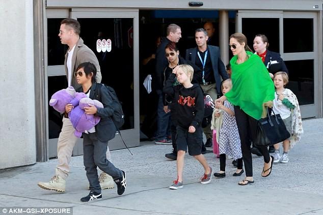 Brad Pitt bị tước quyền thăm các con - ảnh 1