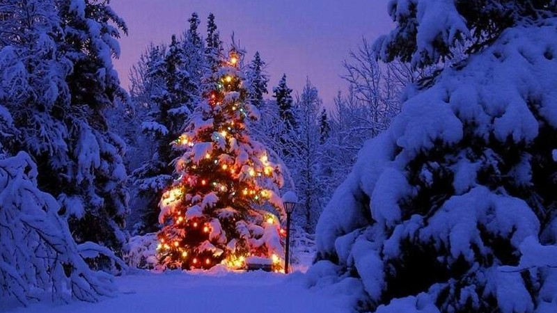 Giáng sinh ở quê hương ông già Noel ra sao? - ảnh 3