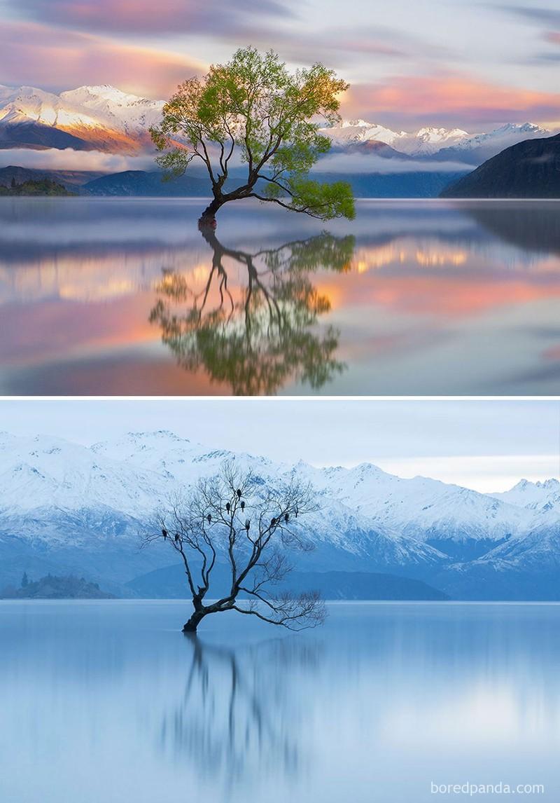 Chùm ảnh: Mùa đông đã biến đổi thế giới như thế nào? - ảnh 5