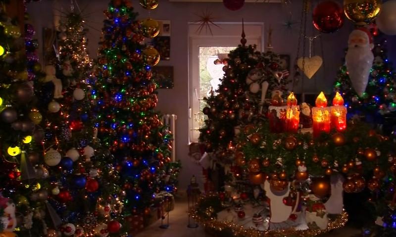 Phủ kín nhà bằng 110 cây thông để đón Giáng sinh - ảnh 1