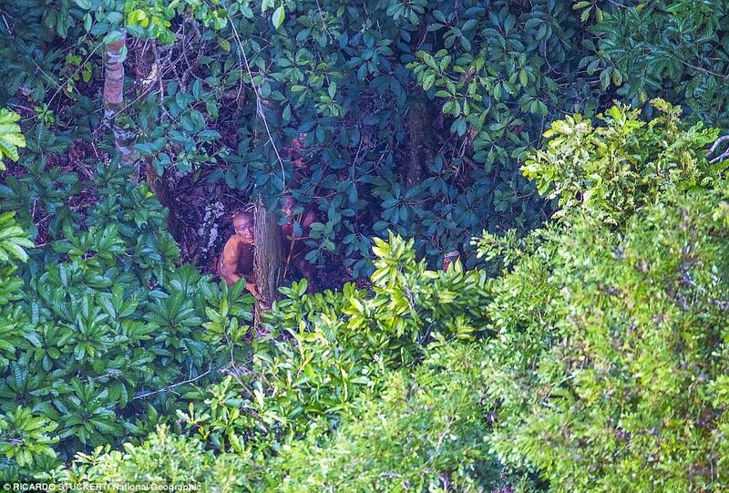 Phát hiện bộ lạc bí ẩn trong rừng Amazon - ảnh 6