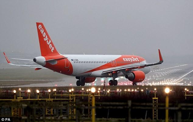 Máy bay hạ cánh khẩn cấp vì sự cố mùi thối - ảnh 1