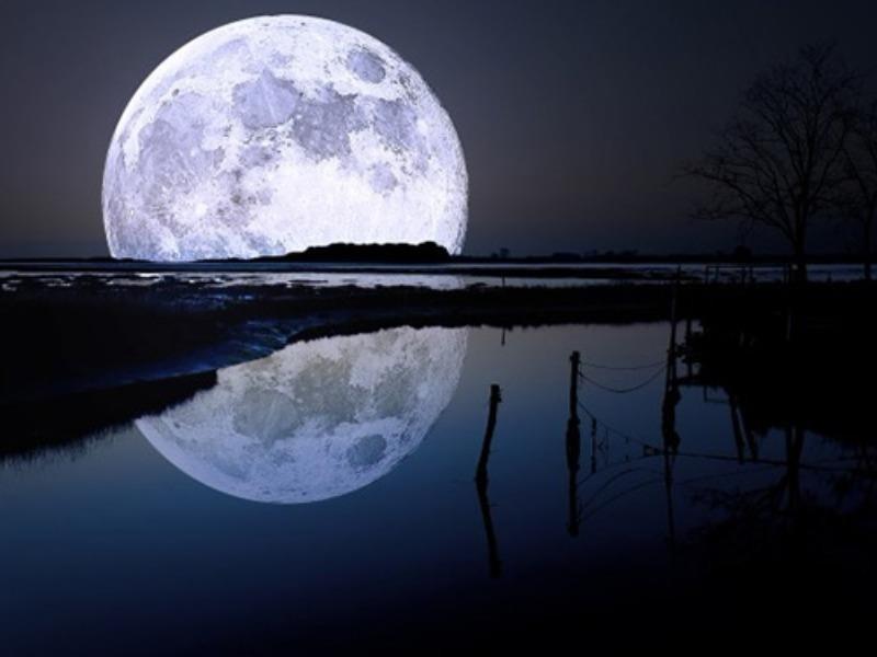Thế giới đón chào năm mới với mặt trăng sói - ảnh 1