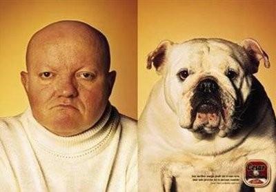 Những chú cún khuôn mặt giống chủ y hệt - ảnh 9