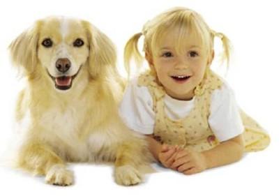 Những chú cún khuôn mặt giống chủ y hệt - ảnh 10