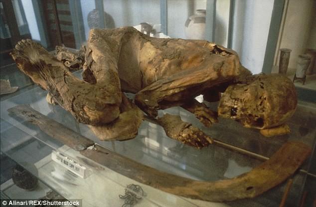 Phát hiện chấn động chưa từng biết về xác ướp Ai Cập - ảnh 1