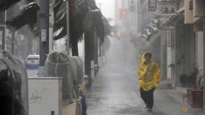 Nhật thiệt hại nặng nề sau bão Trami - ảnh 1