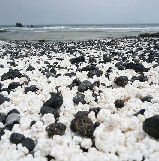 Kỳ lạ bãi biển chứa đầy bỏng ngô - ảnh 6