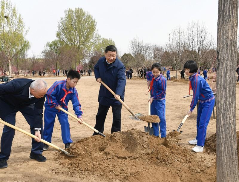 Ông Tập Cận Bình cùng trồng cây với học sinh Trung Quốc - ảnh 2
