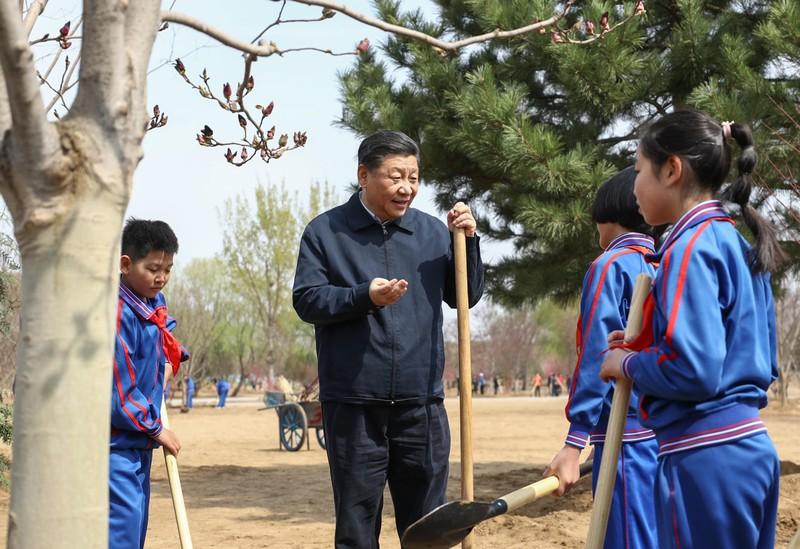 Ông Tập Cận Bình cùng trồng cây với học sinh Trung Quốc - ảnh 4