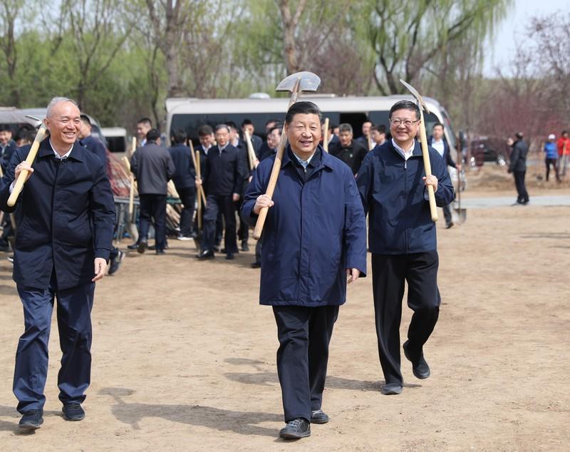 Ông Tập Cận Bình cùng trồng cây với học sinh Trung Quốc - ảnh 1