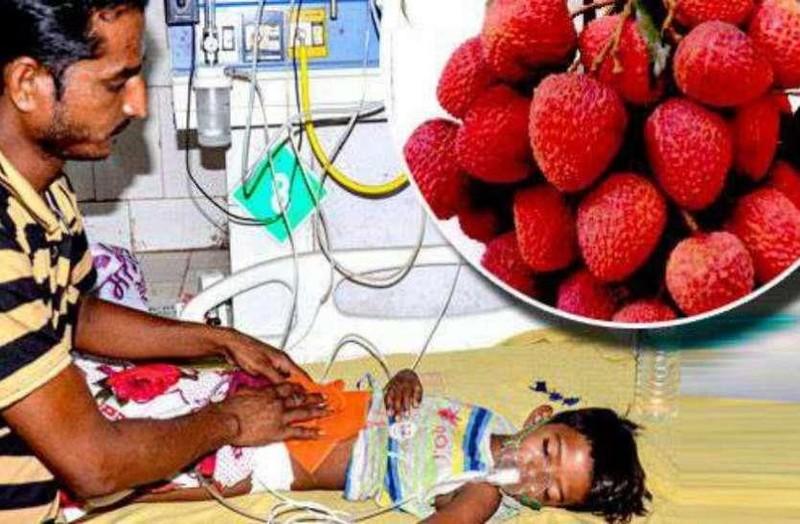Ấn Độ: Hơn 100 trẻ tử vong vì ăn vải thiều - ảnh 1
