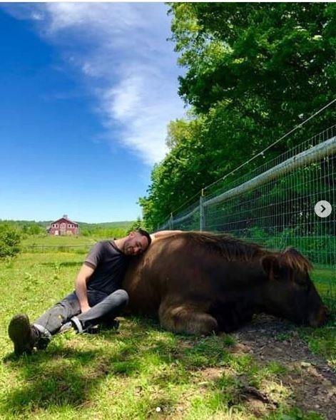 Bạn có dám bỏ ra 1,7 triệu đồng/giờ để chơi với bò? - ảnh 2