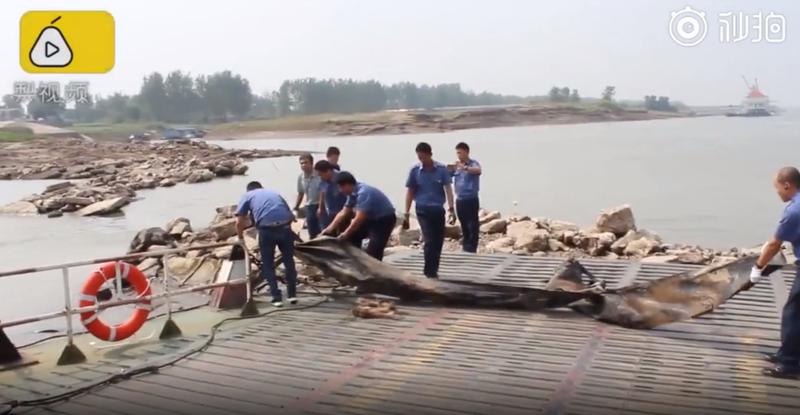 Đã tìm ra bí ẩn về 'quái vật Loch Ness' ở Trung Quốc - ảnh 2