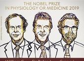 Công trình đạt Nobel Y học 2019 ảnh hưởng đến chúng ta ra sao? - ảnh 2