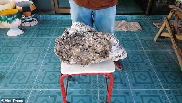 Nhặt rác trên biển, tìm thấy vật lạ trị giá hơn 15 tỉ đồng - ảnh 2