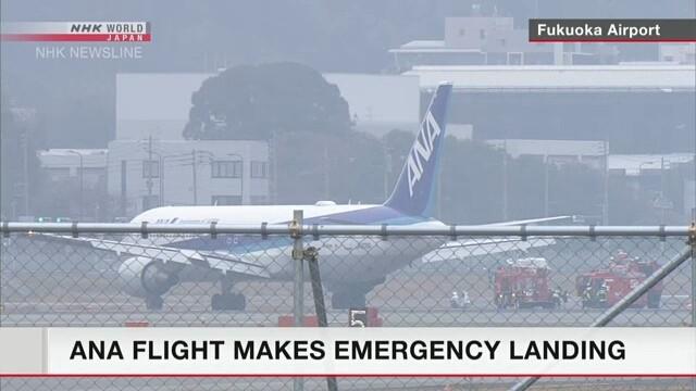 Máy bay Nhật chở 278 người hạ cánh khẩn do động cơ bốc cháy - ảnh 1