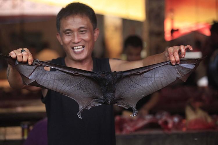 Thịt dơi vẫn được bán nhan nhản mặc kệ dịch COVID-19 - ảnh 3
