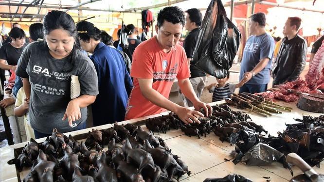 Thịt dơi vẫn được bán nhan nhản mặc kệ dịch COVID-19 - ảnh 1