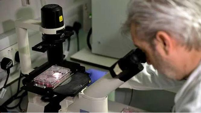 WHO nói cần 31,3 tỉ USD để điều chế vaccine COVID-19 - ảnh 1