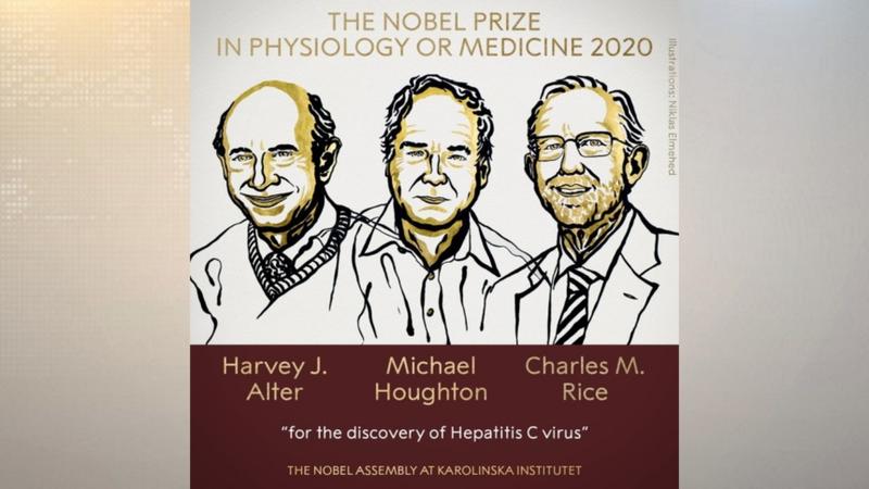 Nobel Y học vinh danh 3 nhà khoa học nghiên cứu viêm gan C - ảnh 1