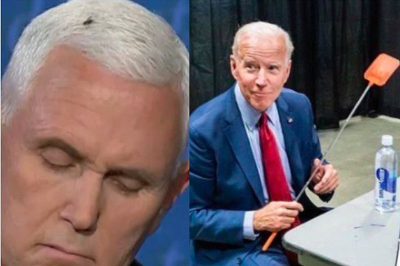 Phe Dân chủ bán vợt đập ruồi sau khi ông Pence bị ruồi đậu - ảnh 1