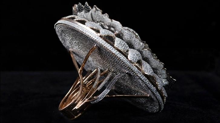 Chiếc nhẫn đính 12.638 viên kim cương đạt kỷ lục Guinness - ảnh 2