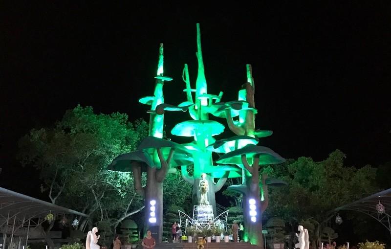 Đình hoãn vô thời hạn Đại hội Thánh Mẫu La Vang - ảnh 2