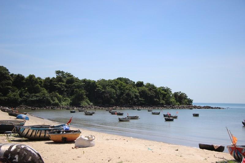 Công ty Trung Thủy nói gì về dự án resort ở Nam Ô? - ảnh 2