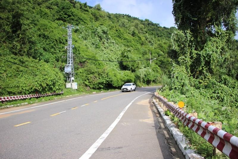 Đà Nẵng chi gần 100 tỉ đồng bảo vệ sinh thái Sơn Trà, Bà Nà - ảnh 1