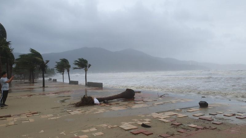 Đà Nẵng lên kế hoạch sơ tán hơn 140.000 dân trước bão số 13 - ảnh 1