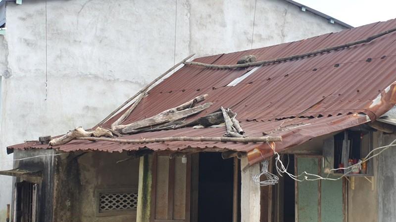 Bạn đọc báo Pháp Luật TP.HCM sẽ dựng lại những căn nhà sau bão - ảnh 5