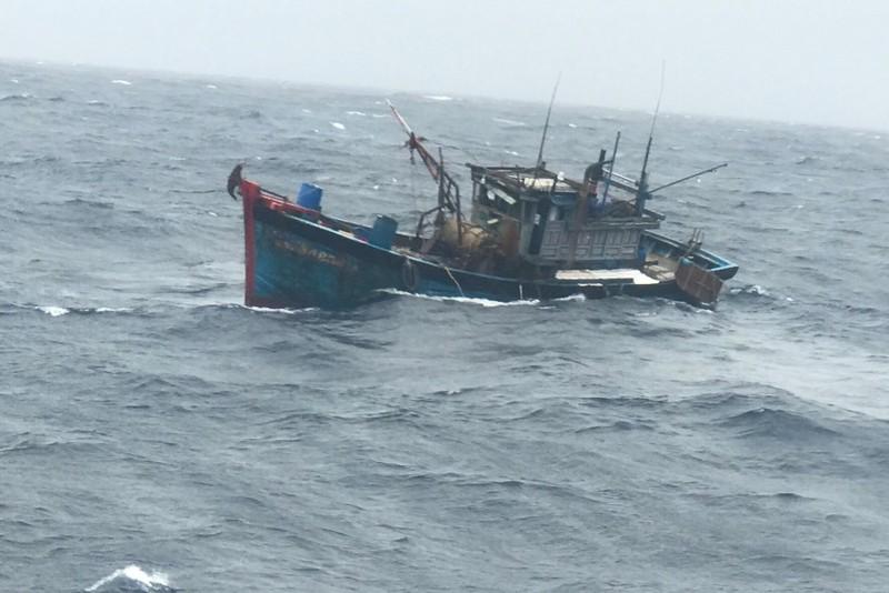 Vượt sóng lớn cứu ngư dân bị tai nạn bất tỉnh trên tàu cá sắp chìm - ảnh 2