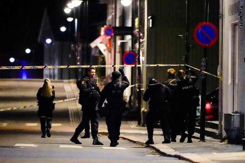 Na Uy: Tấn công bằng cung tên khiến năm người thiệt mạng - ảnh 1