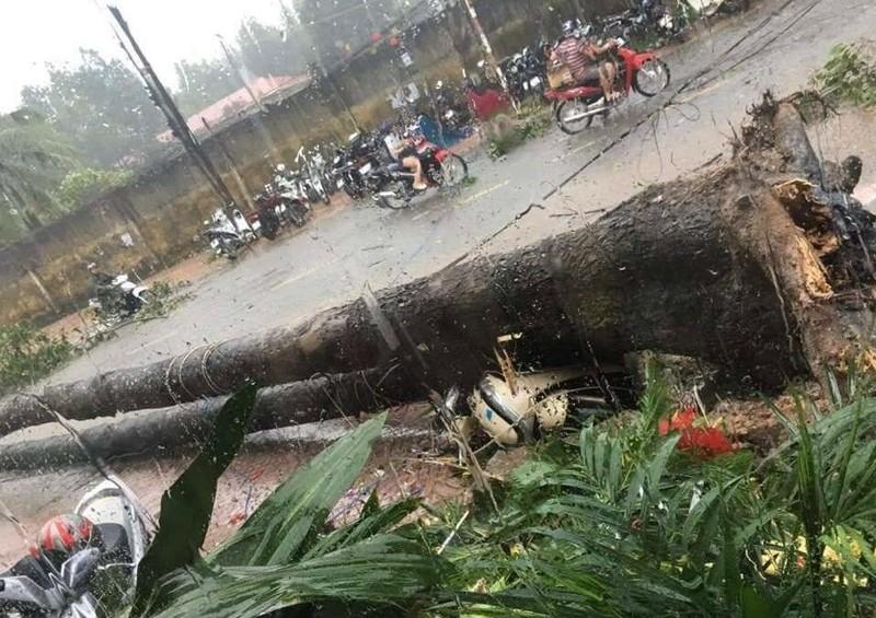 Đồng Nai, Bình Dương ra công điện khẩn ứng phó với bão số 9 - ảnh 1