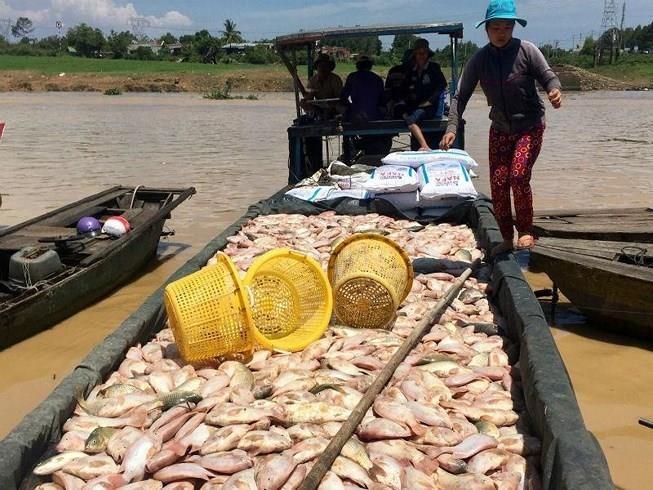 Khai quật ống thải ngầm của Công ty AB Mauri Việt Nam - ảnh 2