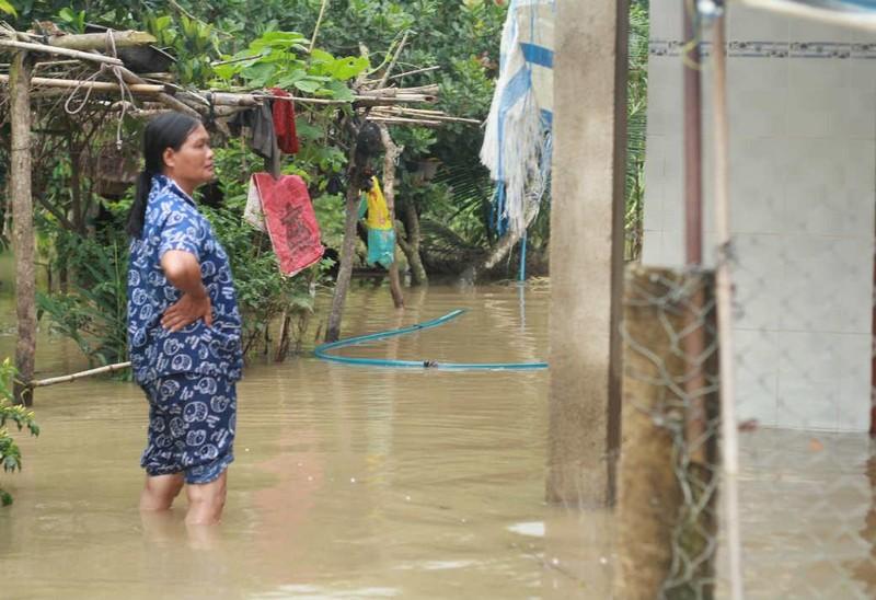 Xác định nguyên nhân ngập lụt khủng khiếp ở Đồng Nai - ảnh 1