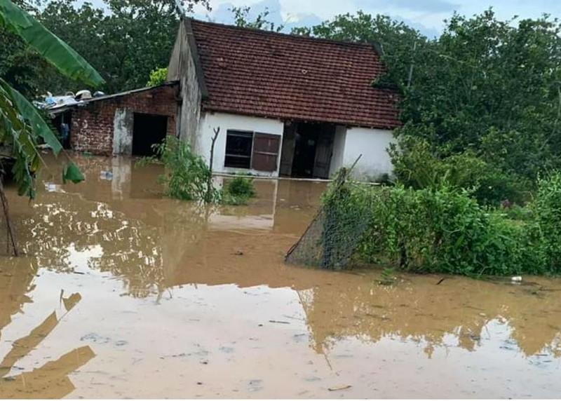 Xác định nguyên nhân ngập lụt khủng khiếp ở Đồng Nai - ảnh 3