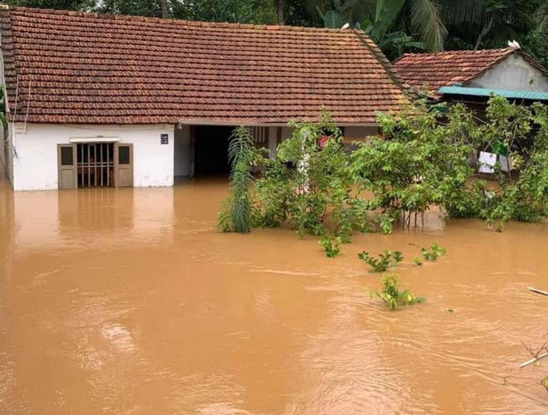 Xác định nguyên nhân ngập lụt khủng khiếp ở Đồng Nai - ảnh 2
