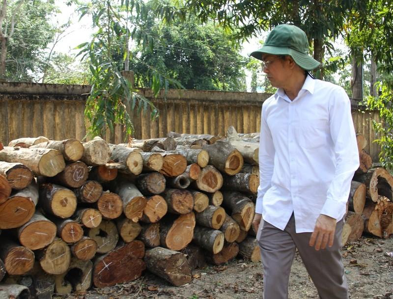 Lãnh đạo Đồng Nai kiểm tra vùng cây bị đốn ở khu bảo tồn - ảnh 3