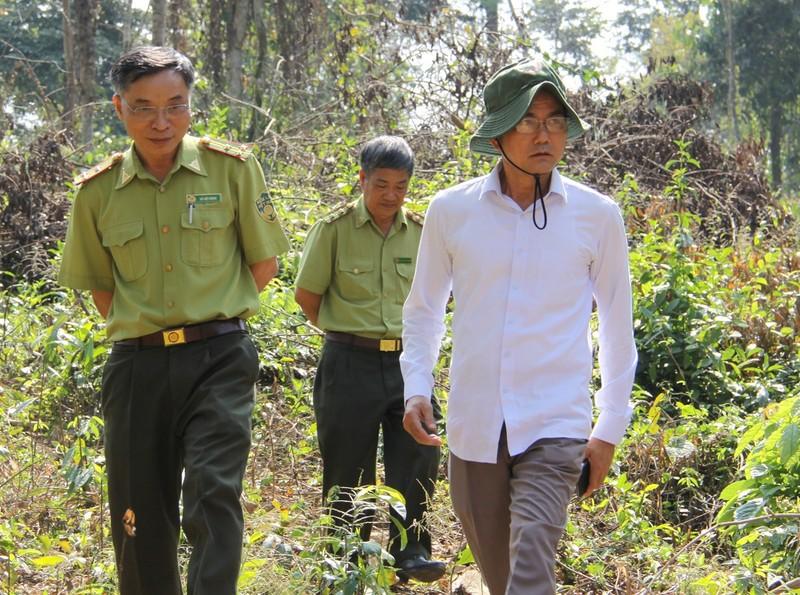 Lãnh đạo khu bảo tồn ở Đồng Nai nói về việc cây rừng bị hạ - ảnh 1