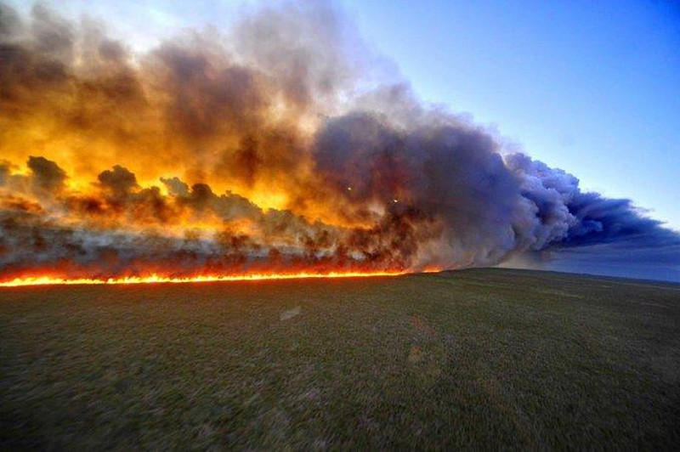 Các ngôi sao thể thao đang 'ngăn' cháy rừng Amazon - ảnh 2