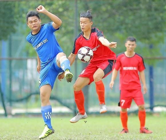 CLB Hoàng Gia vô địch giải bóng đá TP Mới Bình Dương - ảnh 2