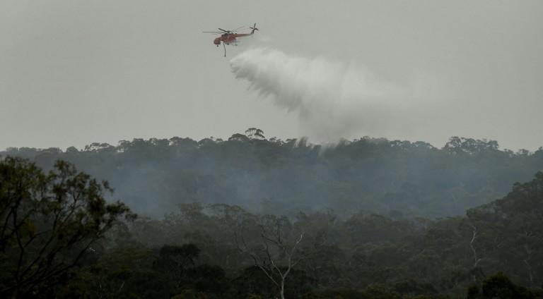 VĐV ngất xỉu khi thi đấu vì khói bụi cháy rừng ở Úc - ảnh 2
