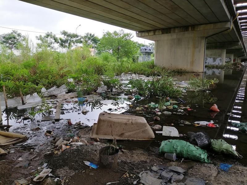 Cận cảnh rác thải tràn ngập đường song hành cao tốc - ảnh 11
